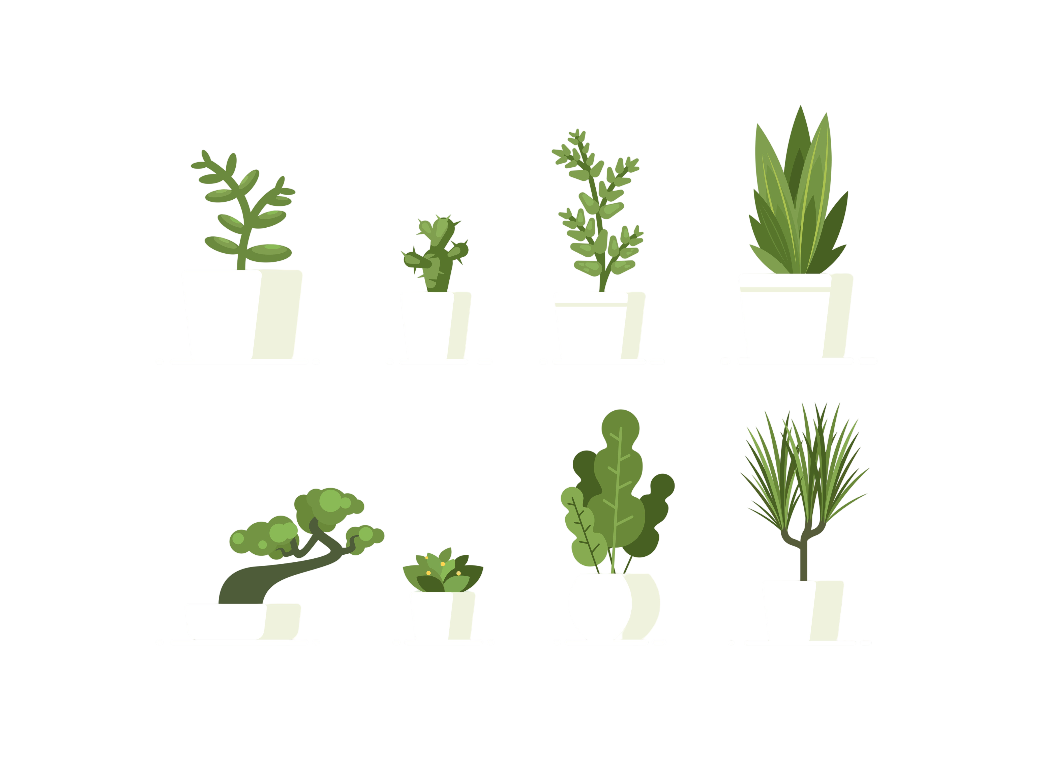 Houseplant in pots. Green natural decor for home and interior. Vector illustration