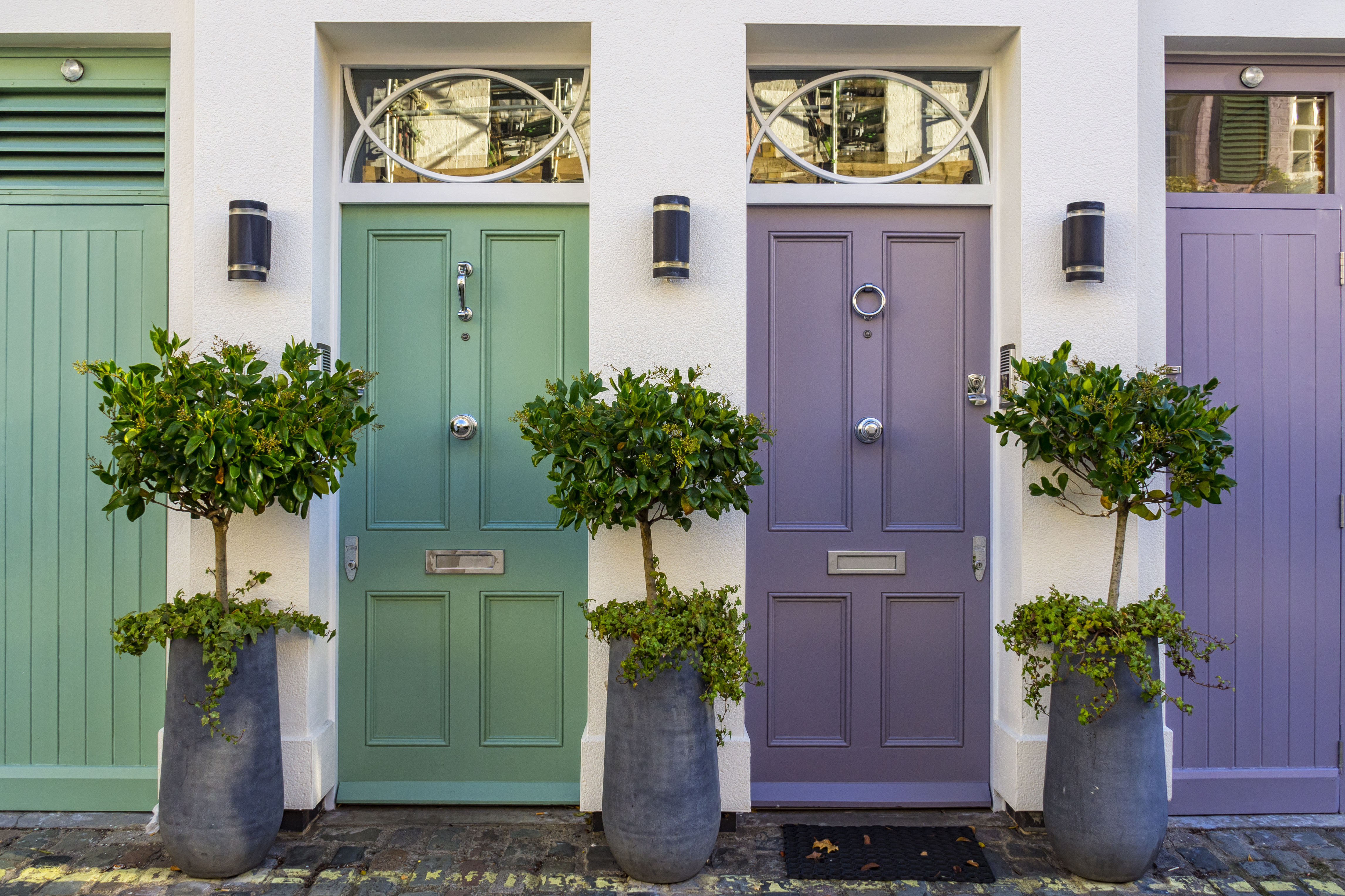 Row of residential front doors in different colours. Doors are purple and green with green trees in between each door.