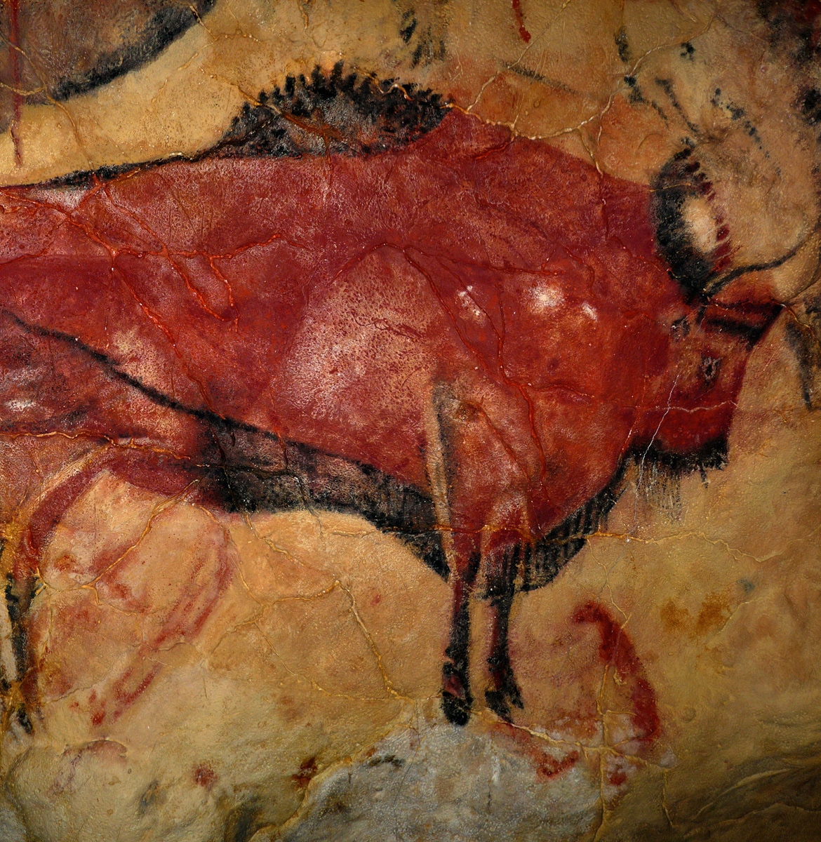 visual ideas from cavemen - cave drawings