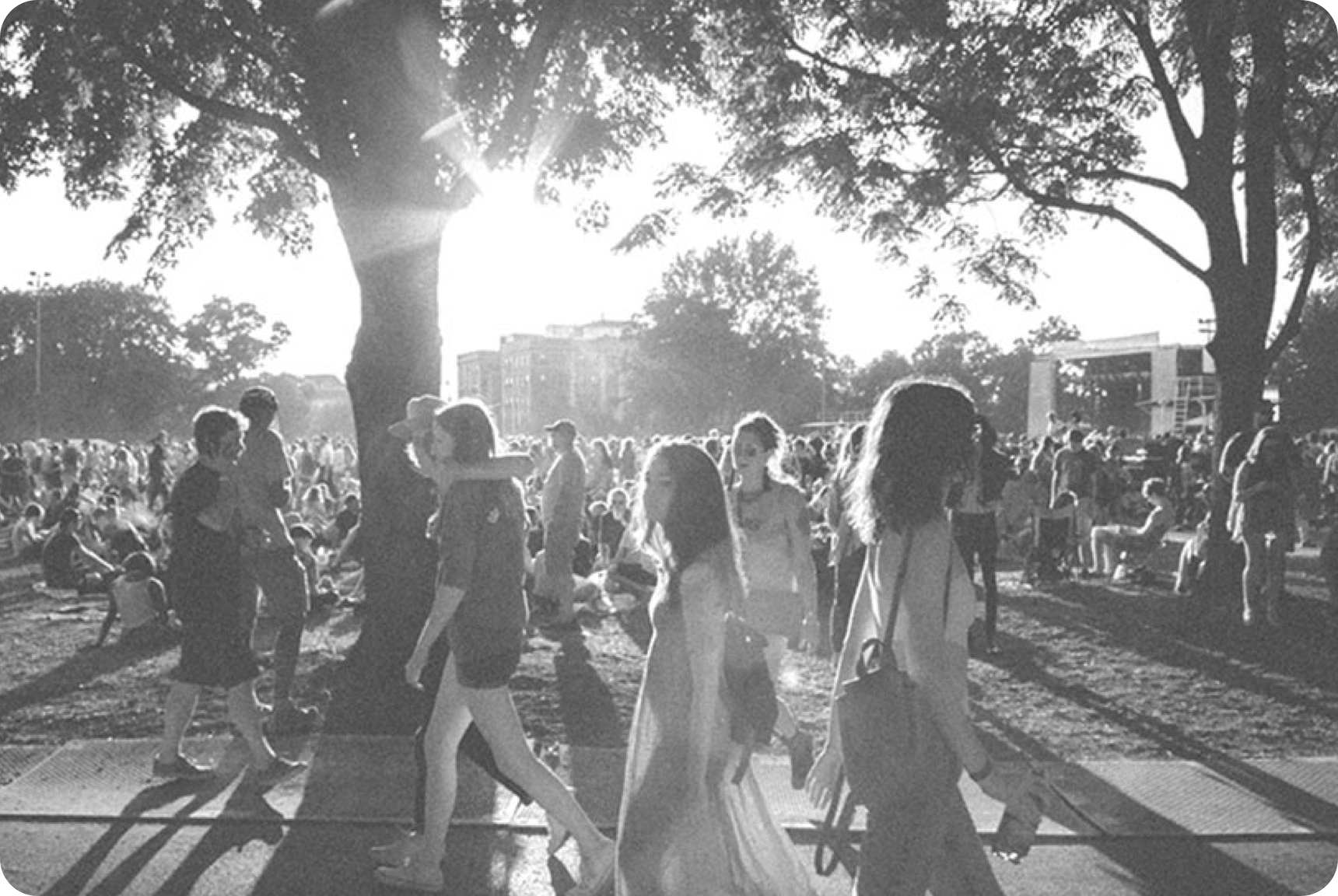 Crowd of people walking amongst trees with the sun setting in the background