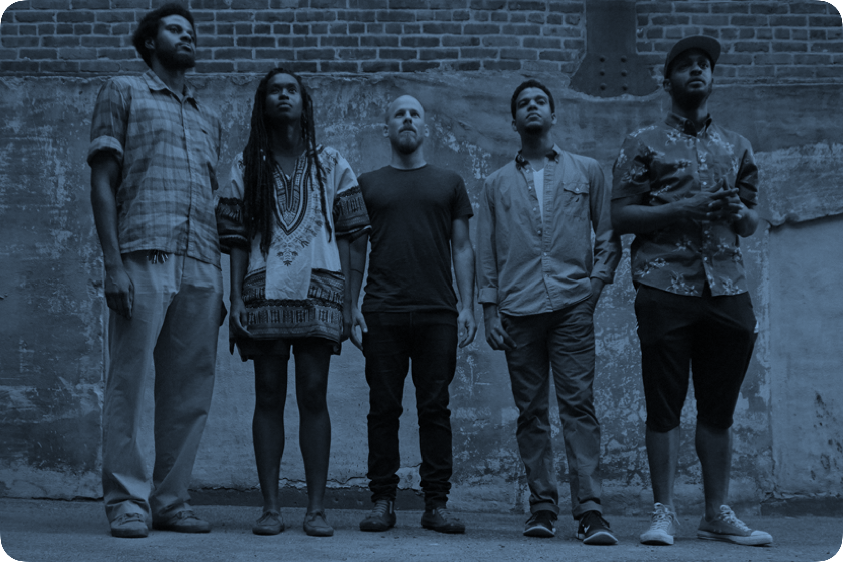 Members of Irreversible Entanglements lined up