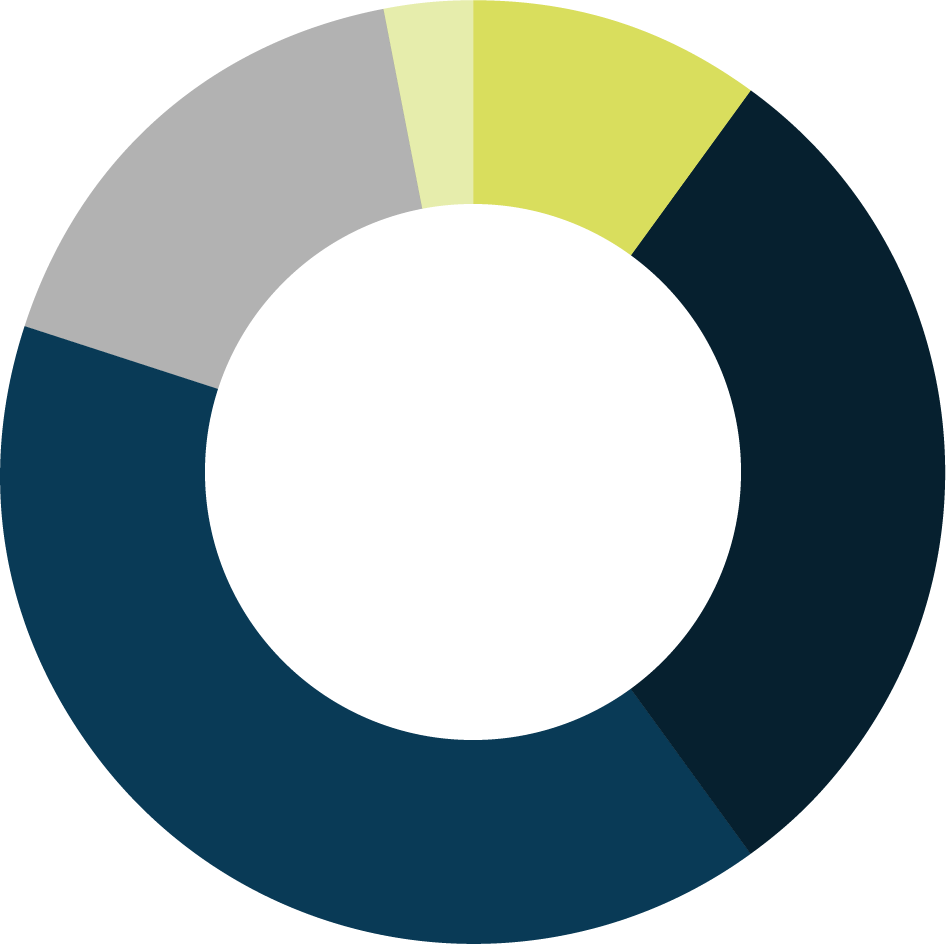 Year-Over-Year Technology Budget pie chart