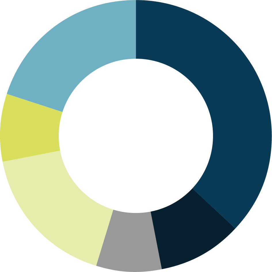 Number of Stores pie chart