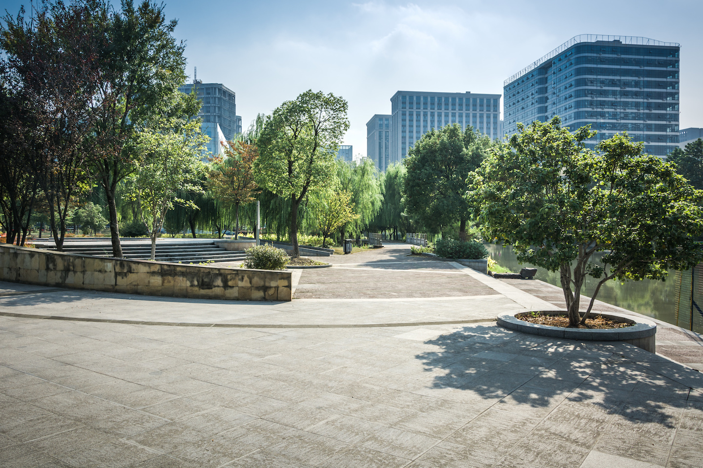 city plaza with trees
