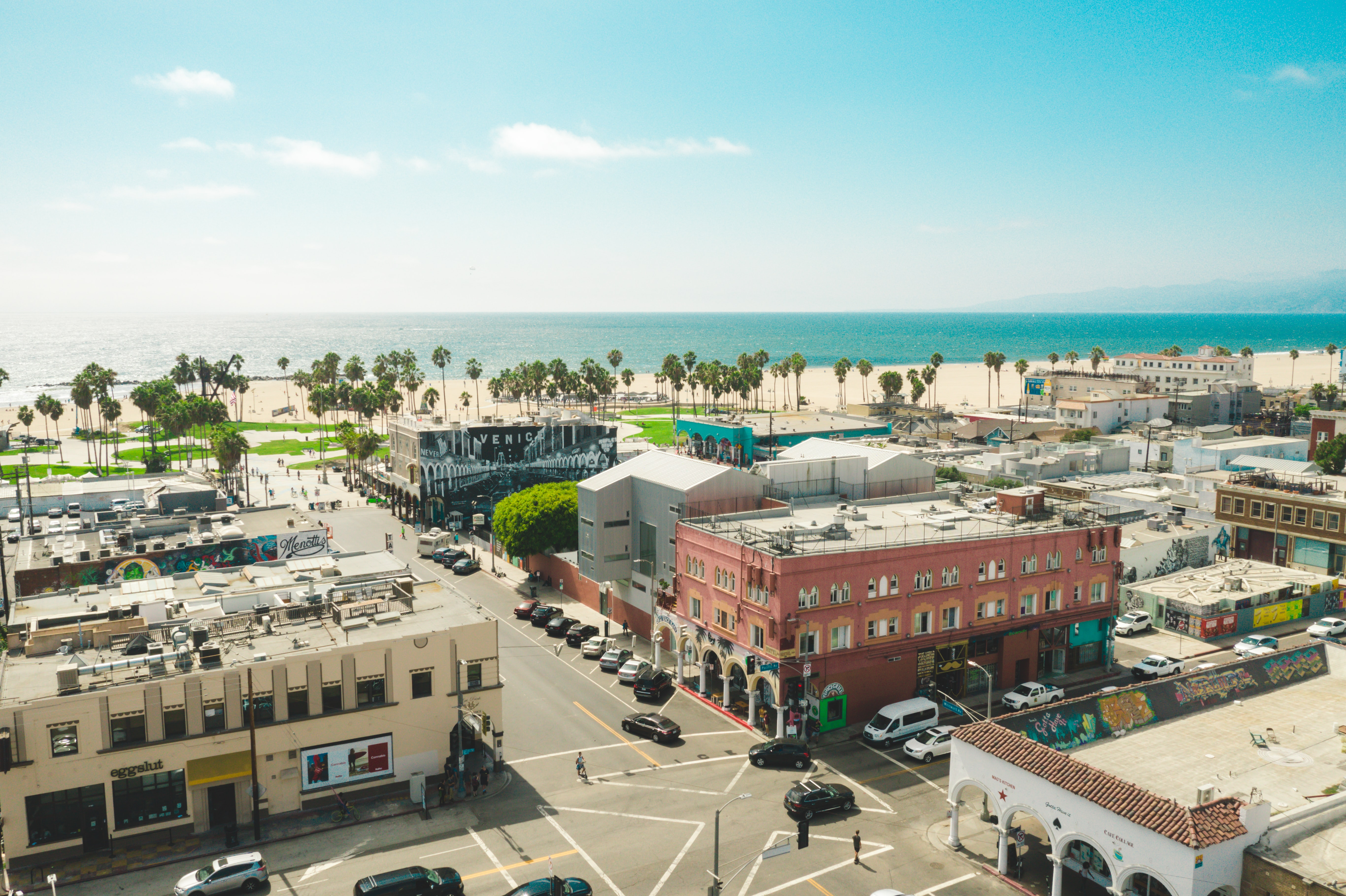 Aerial view of Venice, California, shows buildings in front of a palm tree–lined beach.