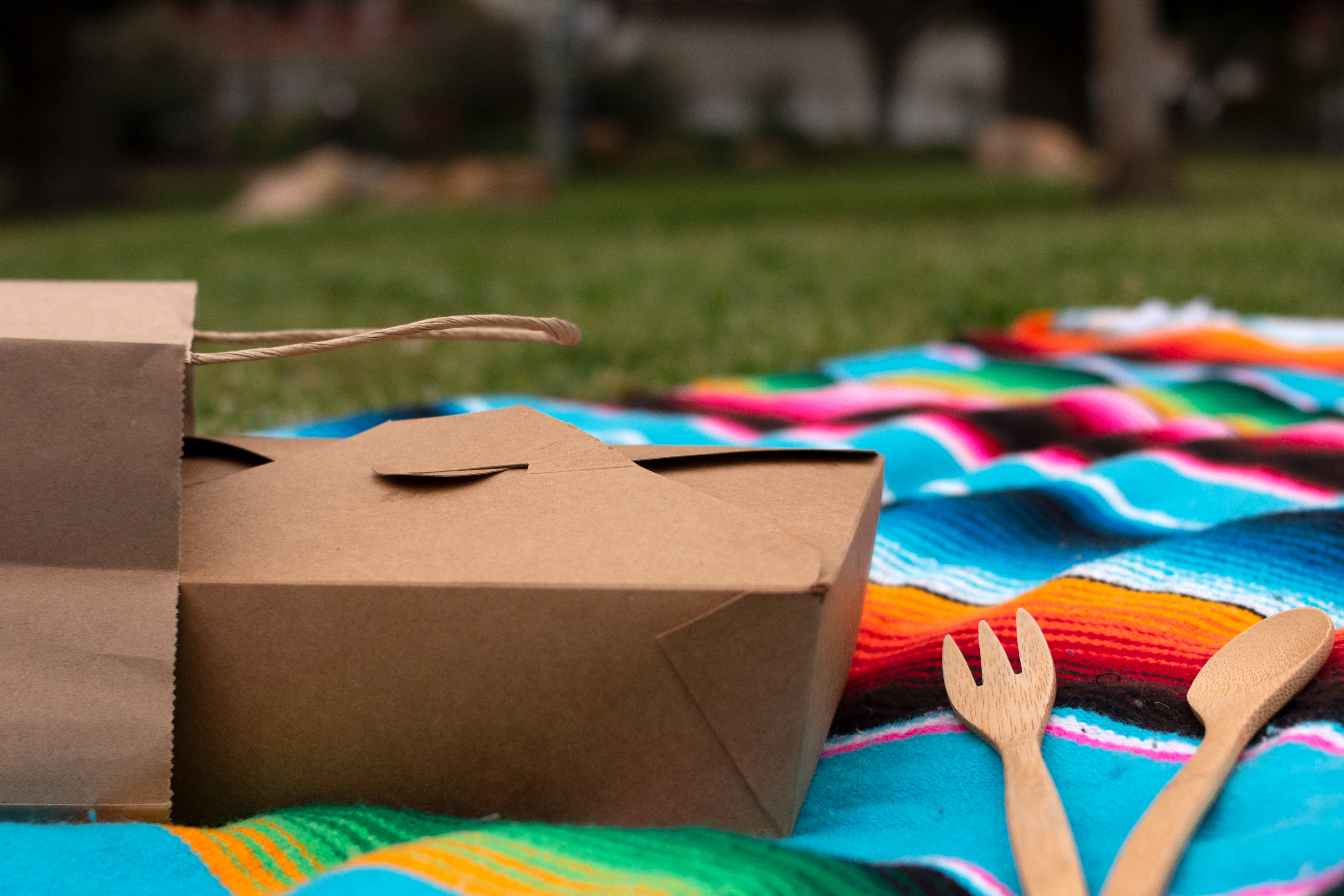 A cardboard takeout box, bag, and utensils sit on a rainbow, woven blanket in a grassy park.