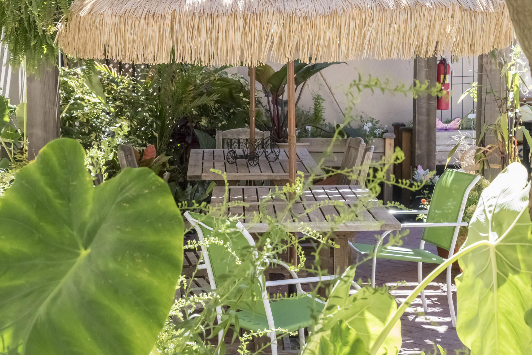 image inside conservatory
