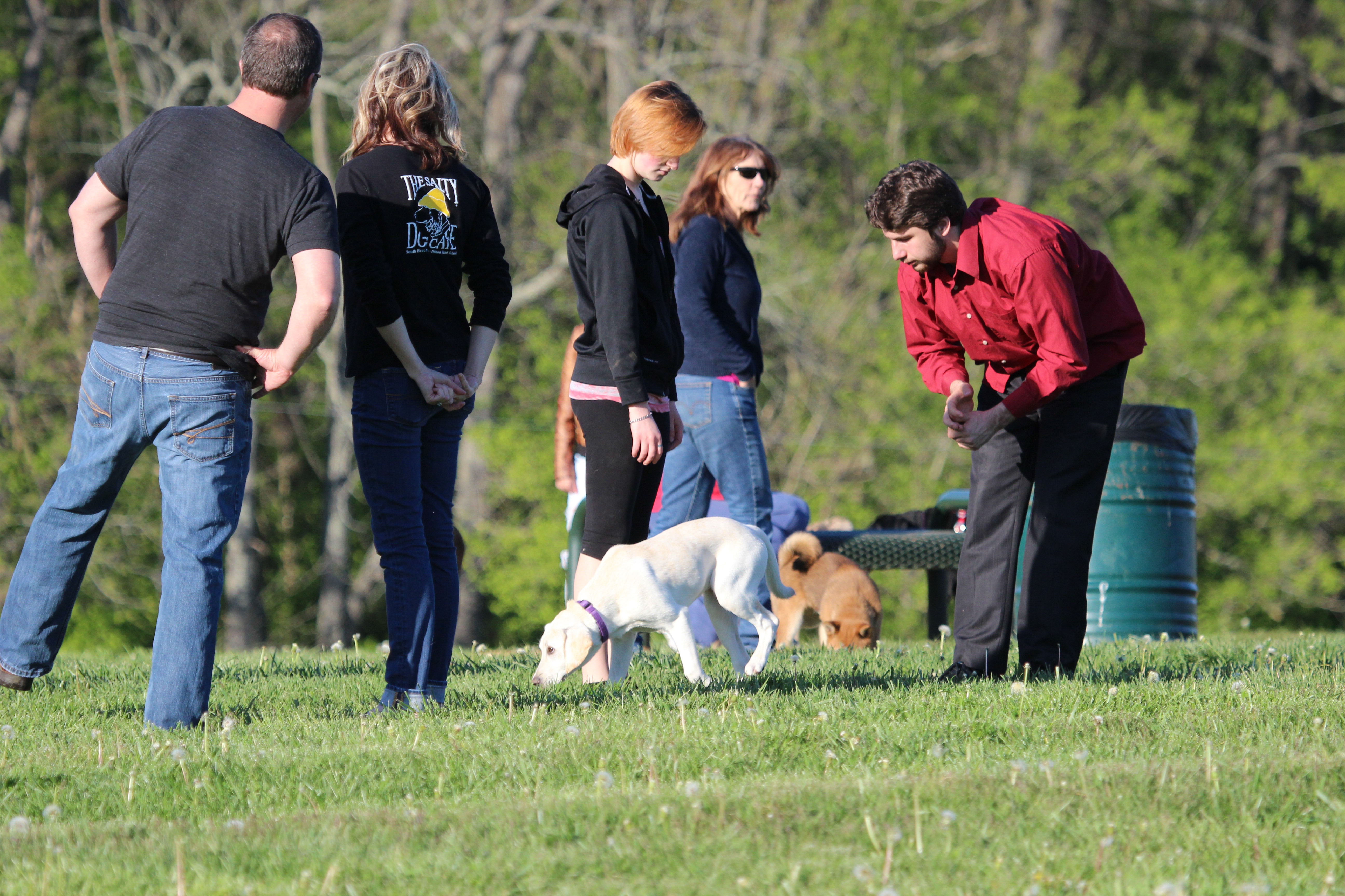 Lexington, Kentucky, United States - April 26, 2015:  Group of people playing with their dogs at Jacobson Park in Lexington, Kentucky.
