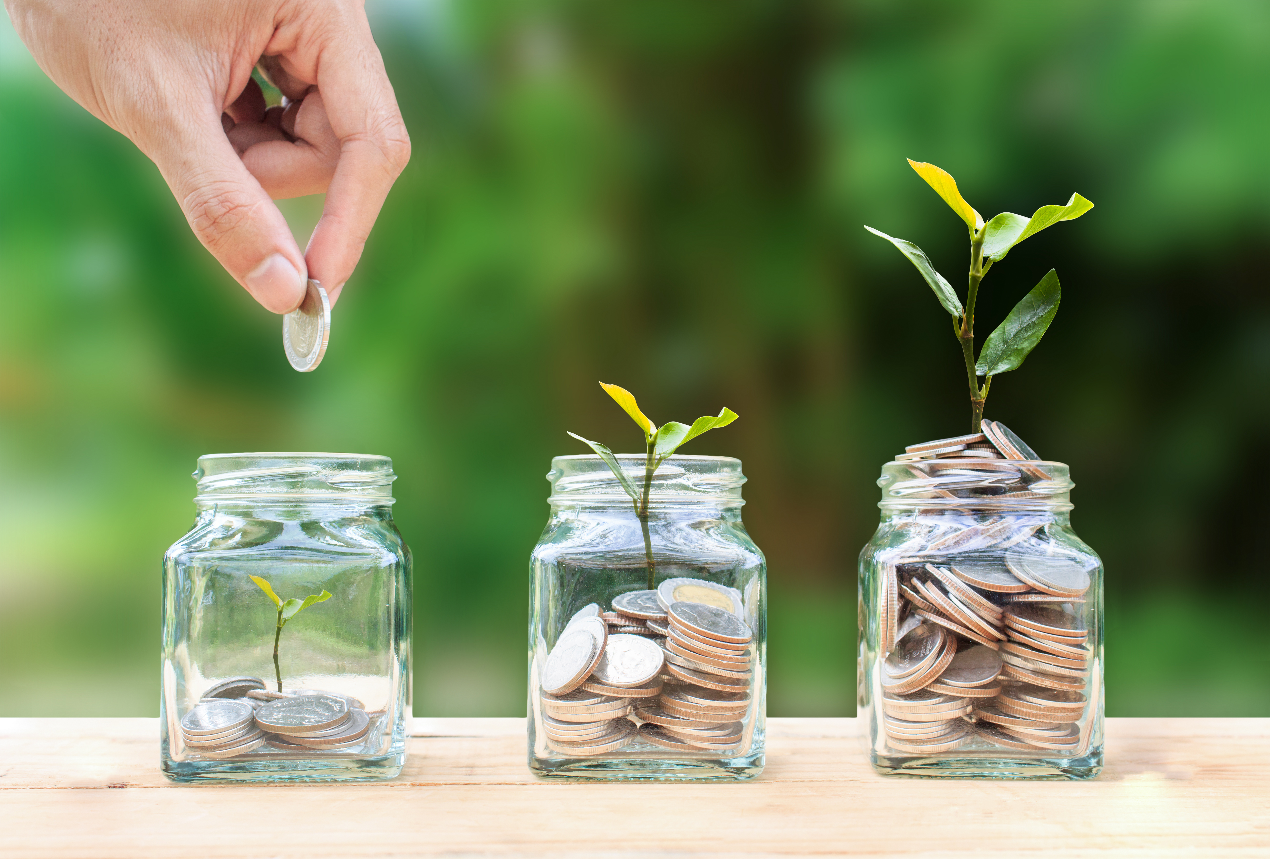 Money savings, investment, making money for future, financial wealth management concept. A man hand holding coin over stacked coins in glass jar and growing tree plant depicts Fund growth and wealth.