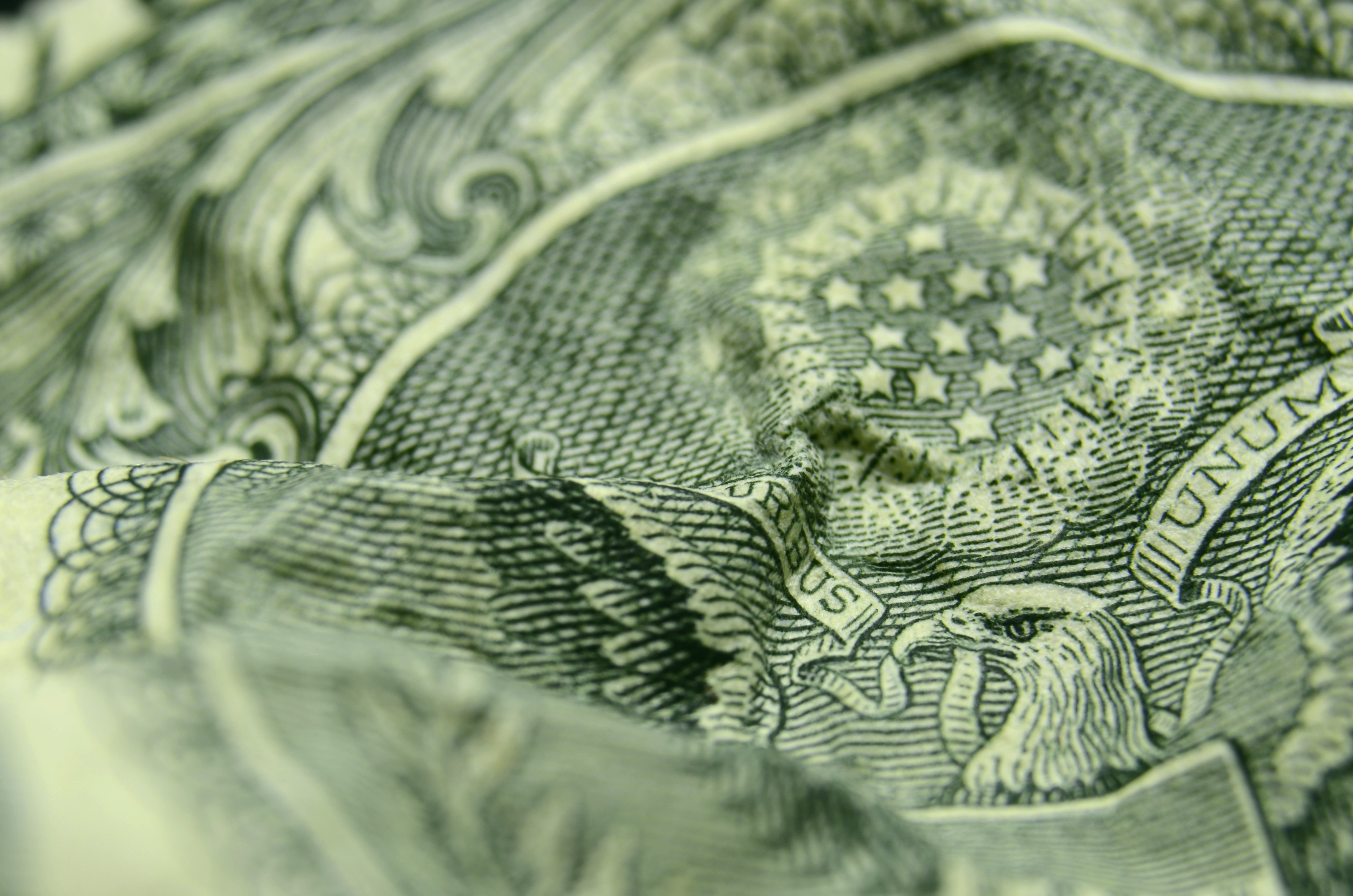 Shallow depth of field close, up of the eagle, from the US Coat of Arms, on a wrinkled, American, one dollar bill.