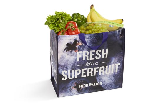 Reusable Food Lion grocery bag full of fresh fruits and vegetables