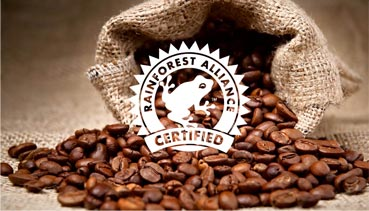 Rainforest Alliance Certified Logo, burlap coffee bag spilling coffee beans on table