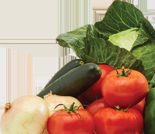 onions, zucchini, tomatoes,, lettuce