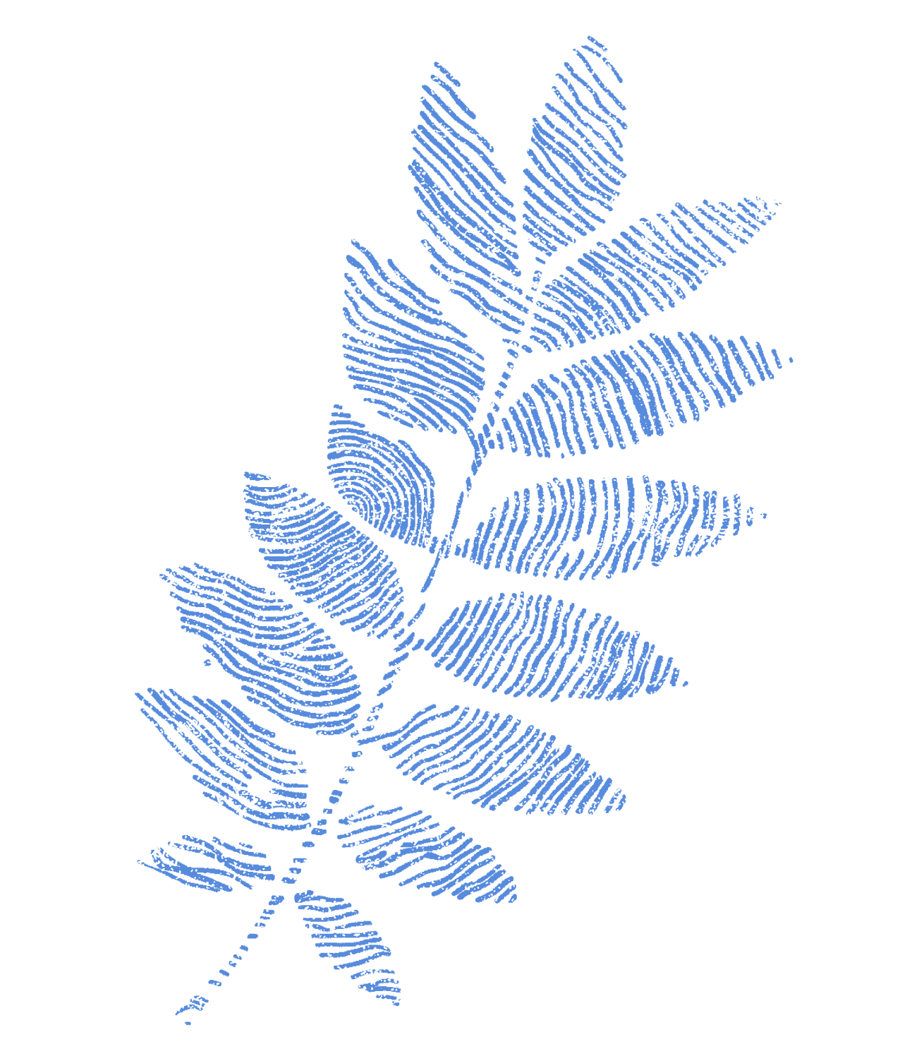 Decorative plant graphic