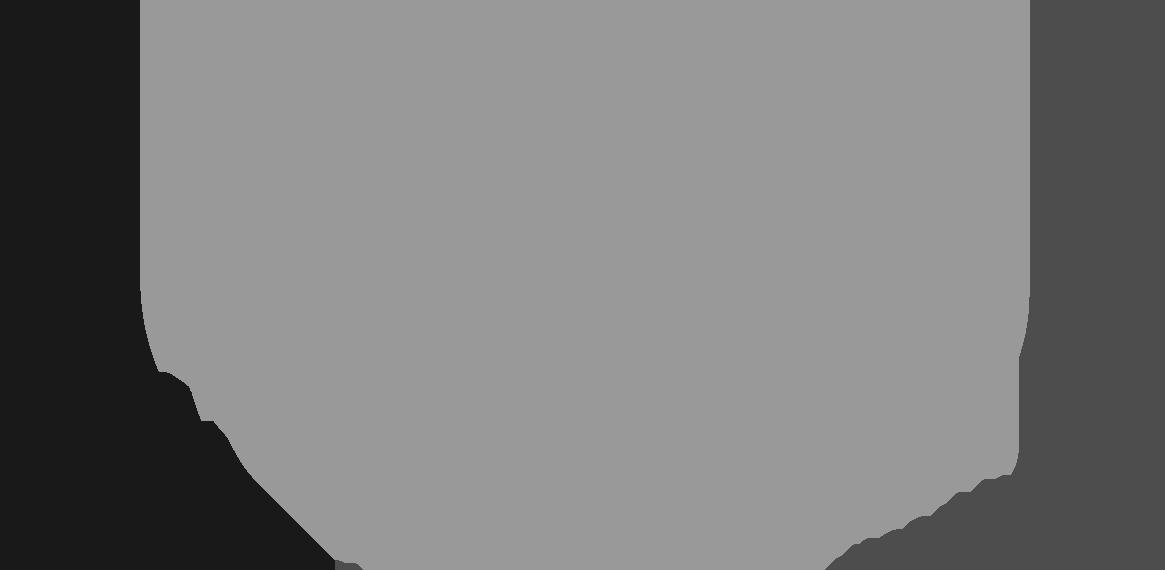 Salsa Icon