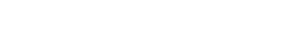 Ribbs returned to IMS with Walker Motorsports in 1993 for another shot at the Indianapolis 500. Driving the No. 75, he qualified 30th and finished 21st. With that finish, Ribbs broke his own record for the best finish by an African American driver in the Indianapolis 500.