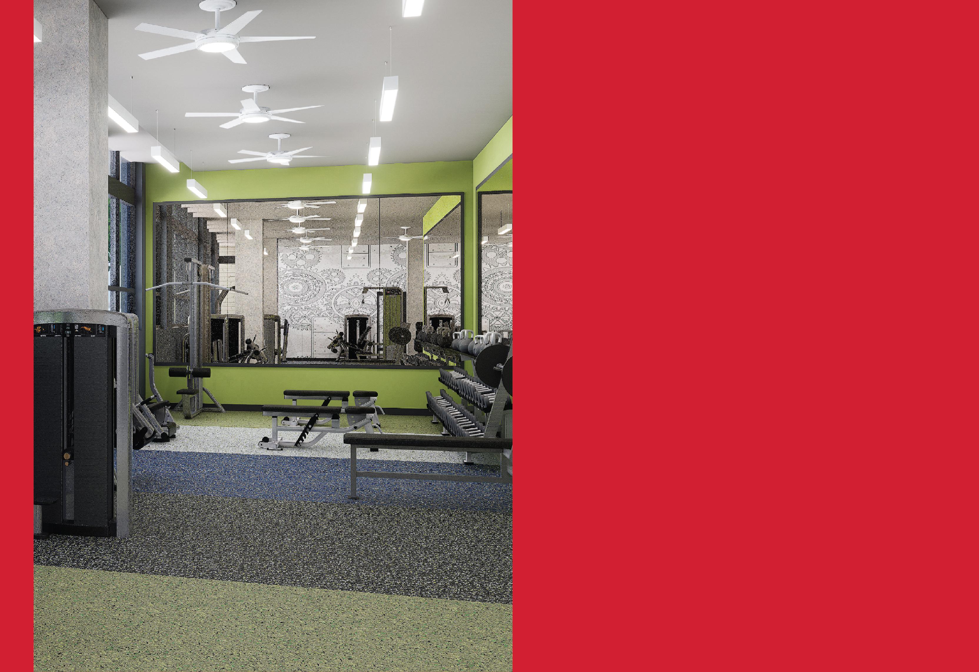 Standard Raleigh Weight Room