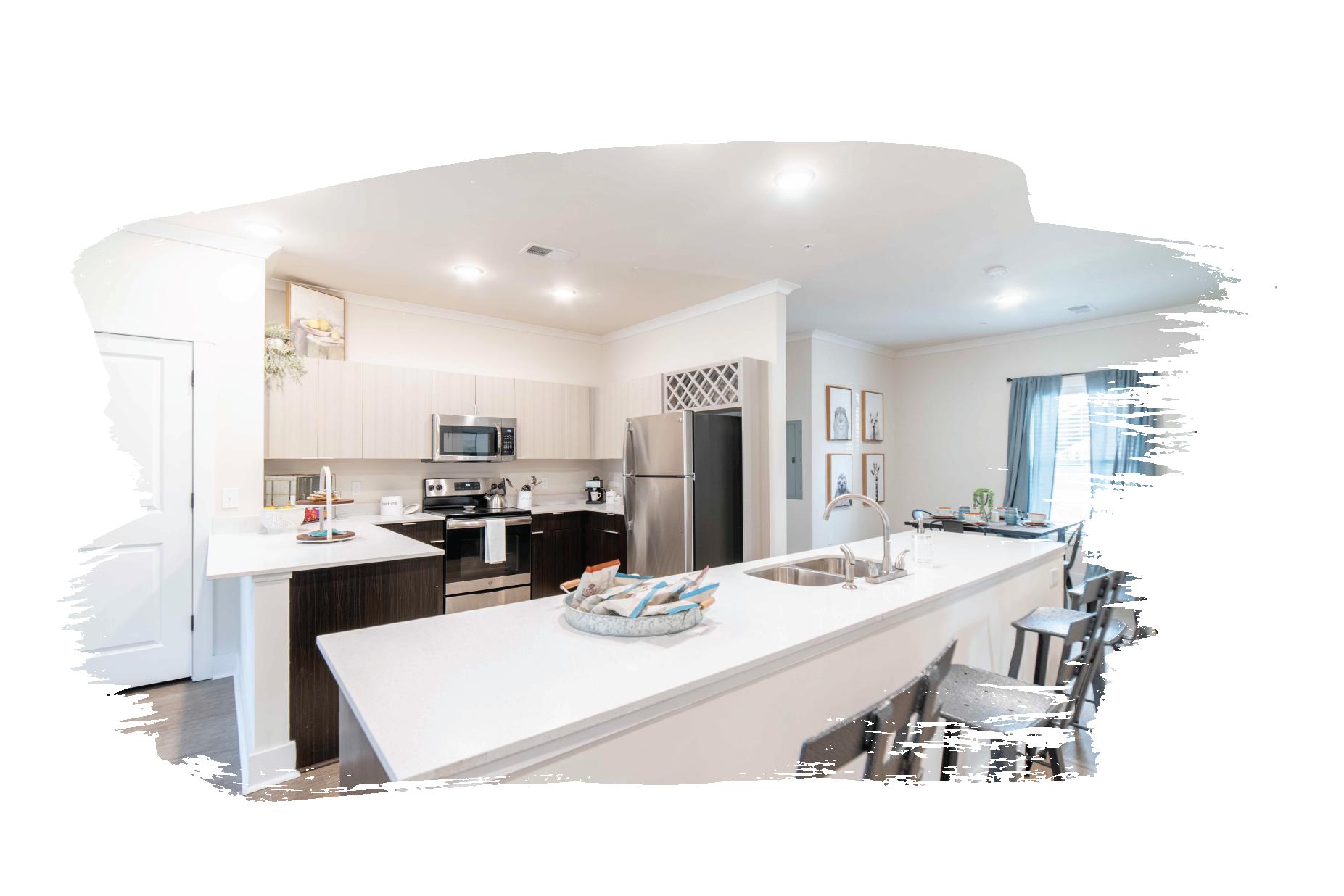 kitchen cabinets & quartz countertops