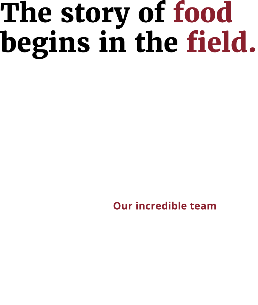 The story of food begins in the field.