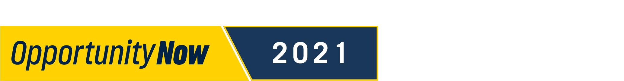 Opportunity Now 2021 logo