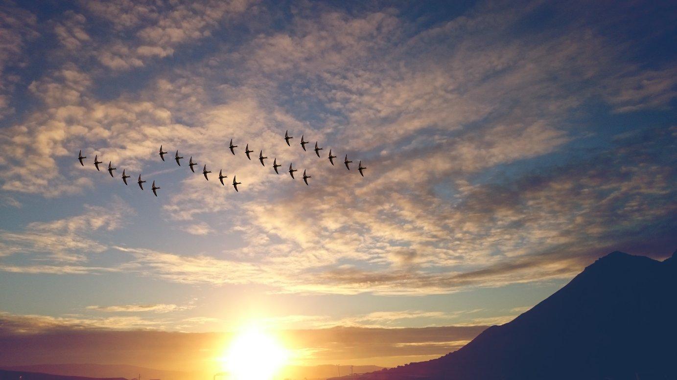 Accelerate and De-Risk Cloud Migrations | Turbonomic