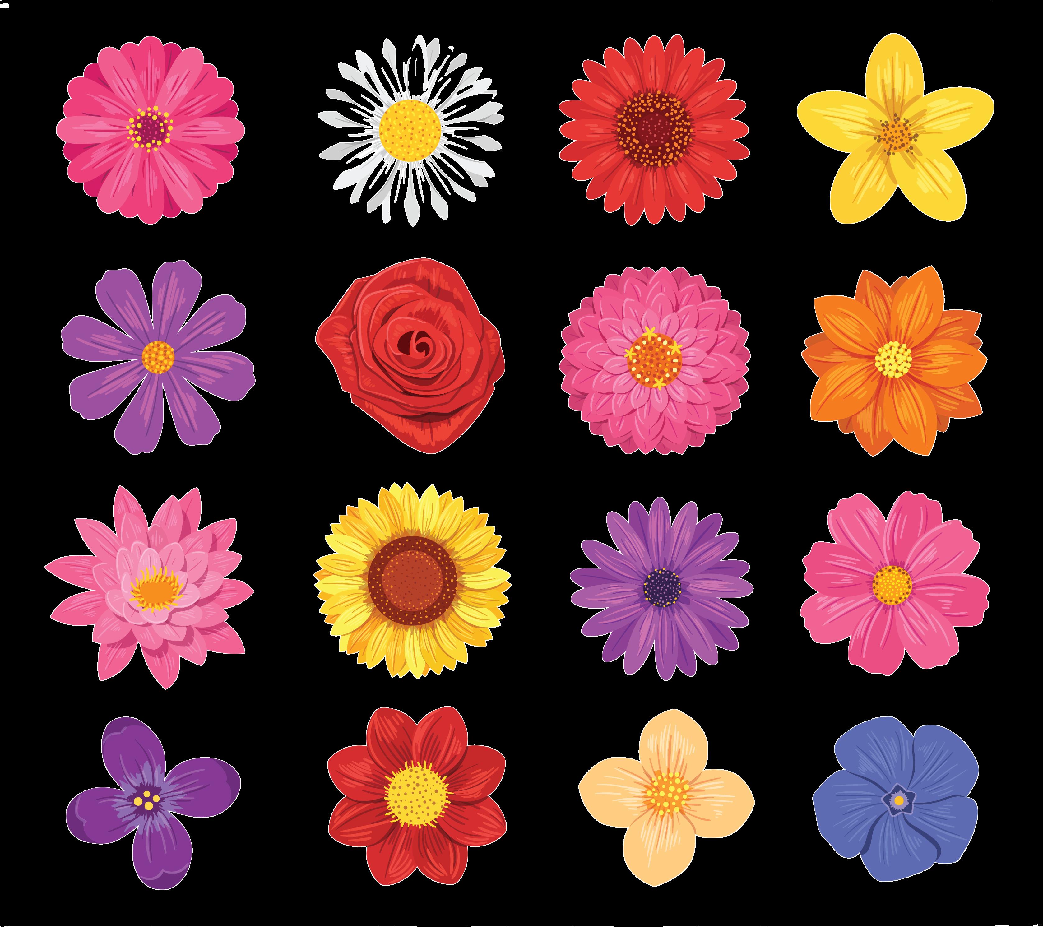 Set of various flowers